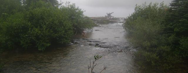 Waterton Stream